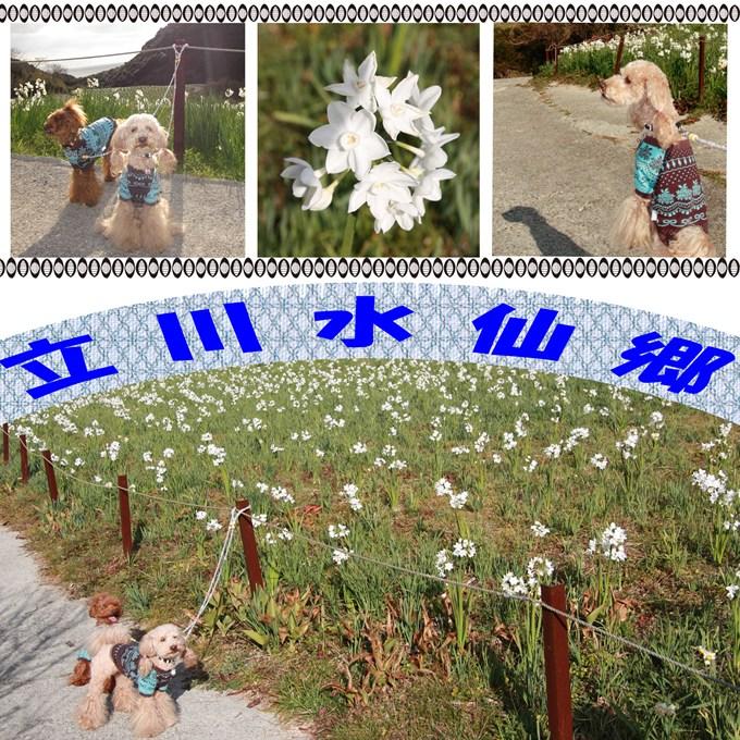 5_20120112210429.jpg