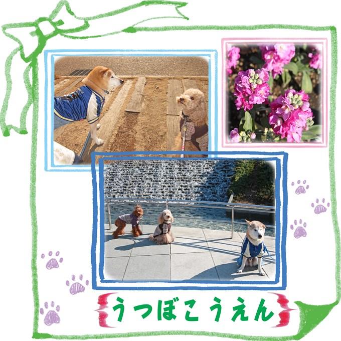 6_20120211213140.jpg