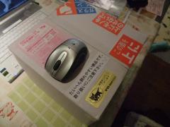 DSCF0091_20101122104538.jpg