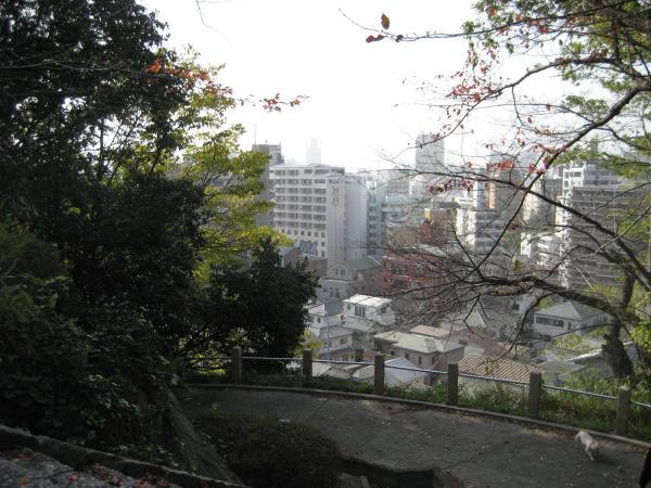 higiyama2.jpg