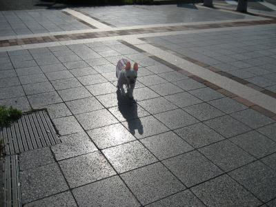 minato8.jpg