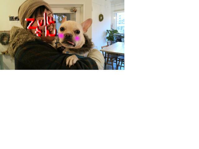 snap_puko0429_201122155733.jpg