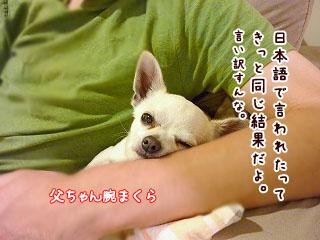 s-1001045 copy