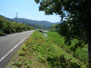 PICT0012_20110720055336.jpg