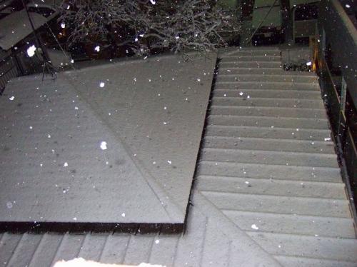 2010年2月1日 005