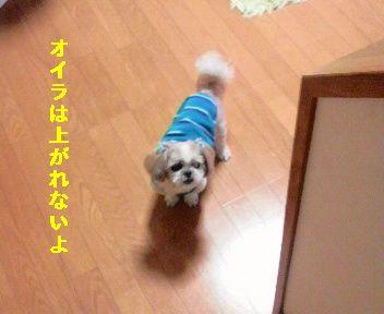 2011050619190000.jpg