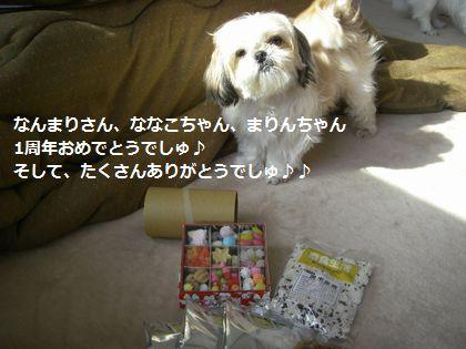 IMGP0337_1.jpg
