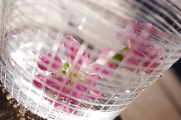しーちゃんのハヤシライスのお花ももらっちゃいました~。
