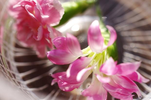 武蔵野茶房でカレーランチについてきた花。