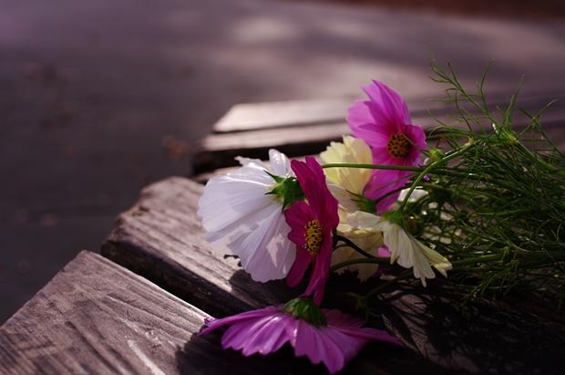 スケボー広場のベンチで。