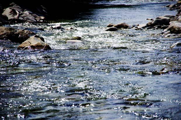 川に抱かれて・・・