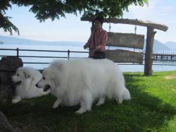 支笏湖 (4)