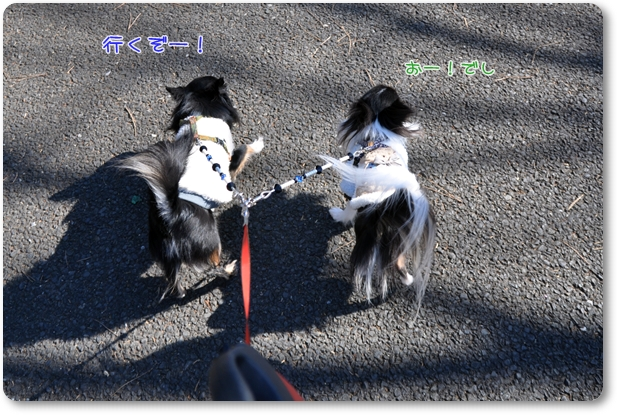 002_20100115191036.jpg