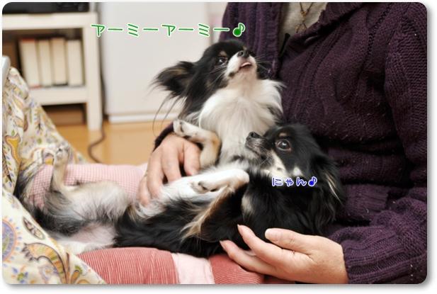 124_20100114204133.jpg