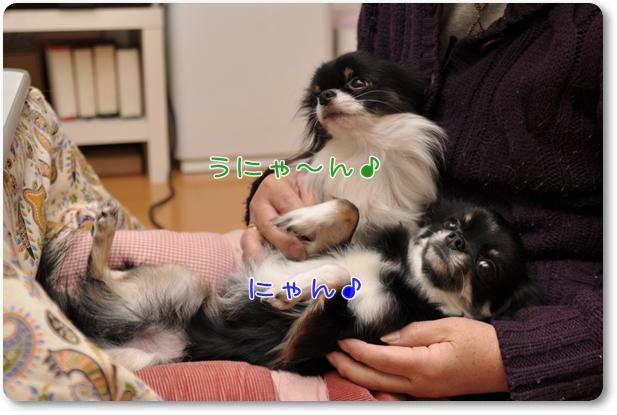 125_20100114204133.jpg