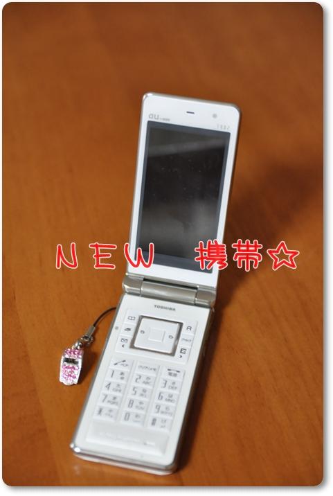 429_20100112164017.jpg