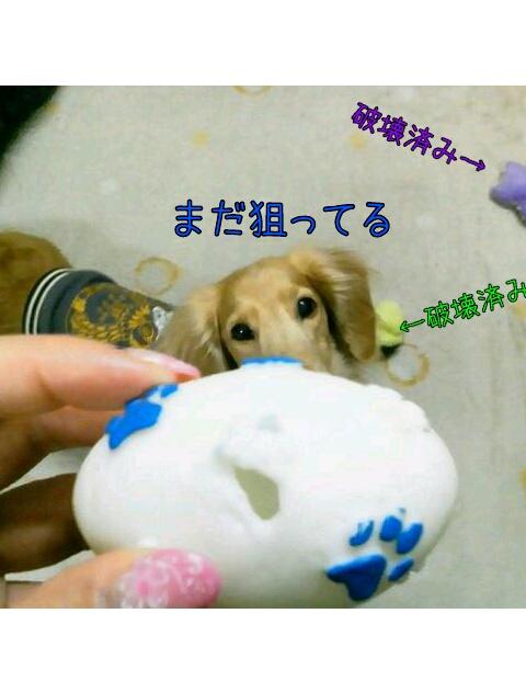 yurumojiCamera_20130214004751.png