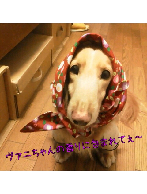 yurumojiCamera_20130216235726.png