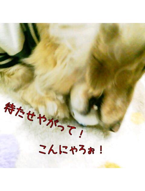 yurumojiCamera_20130222005012.png