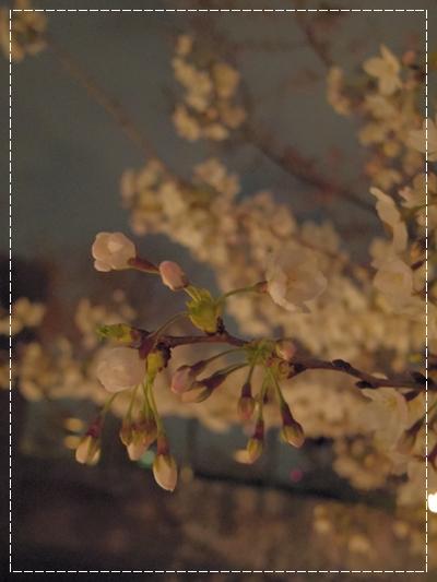 20120409_16.jpg