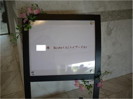 P1040898.jpg