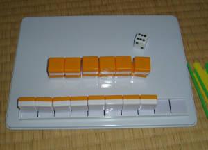 20100203i.jpg