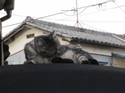 ニシダ飴3