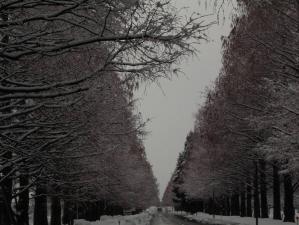 Namiki-2.jpg
