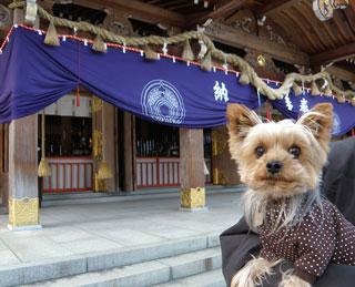 竹駒神社2