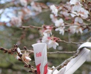 竹駒神社3