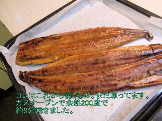 冷凍うなぎ 3尾は一気にガスオーブンで温めます。