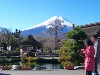 忍野八海からの富士