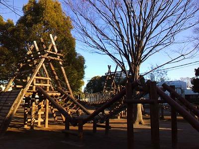 朝日を浴びた公園