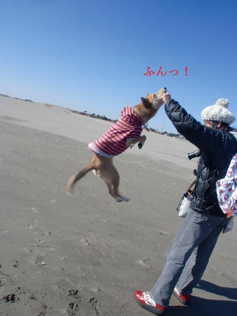垂直飛びっ!