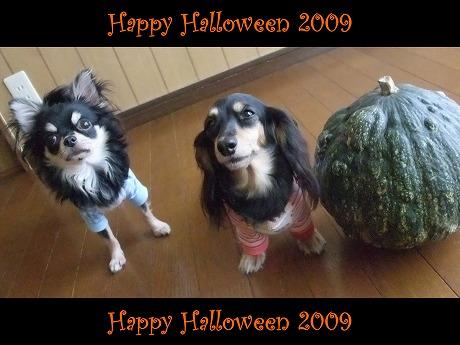 2009-10-18-42.jpg