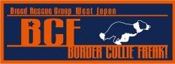 BCF_20100112155732.jpg
