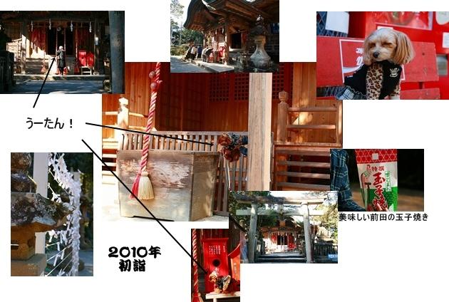 20100104_6492a.jpg