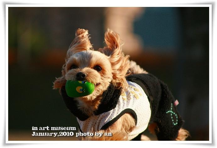 20100105_6707.jpg