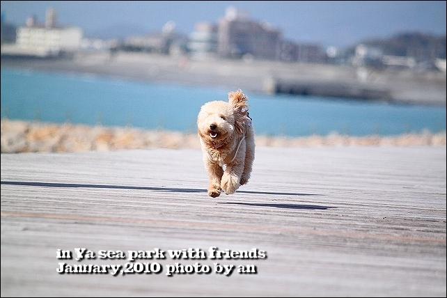20100130_3808.jpg