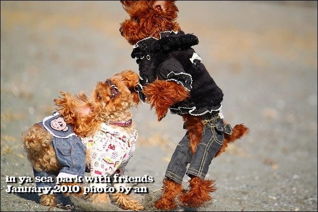 20100130_4191.jpg