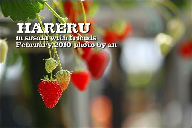 20100206_4534.jpg
