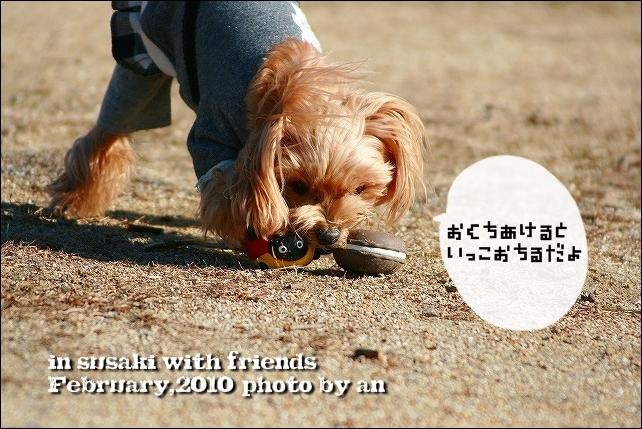 20100206_7436.jpg
