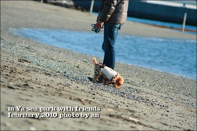 20100207_7632.jpg
