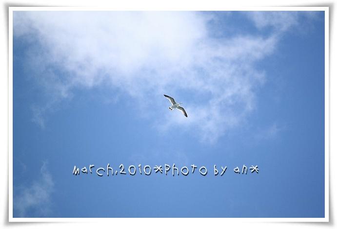 20100310_6535.jpg