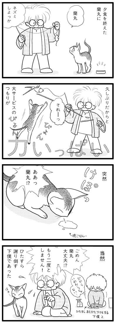 ranmaru_041_1.jpg