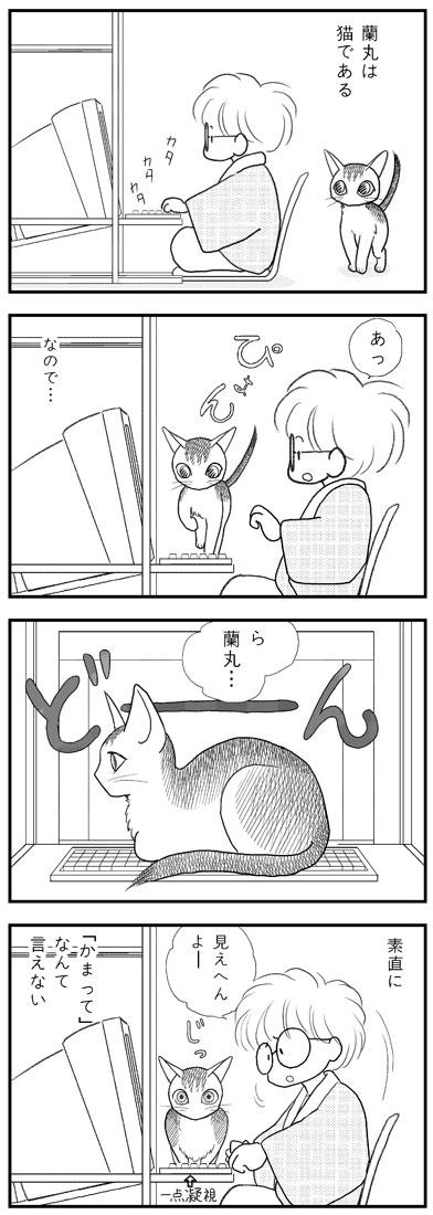 ranmaru_042_1.jpg