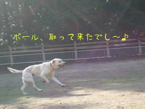 2010_01045gatu0015_20100104221658.jpg