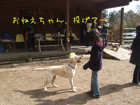 2010_02135gatu0005.jpg