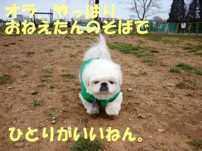 taro100339_convert_20100322143903.jpg
