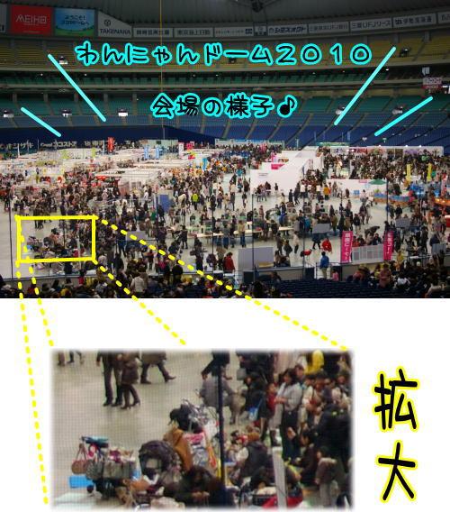 10-02 名古屋参上 1